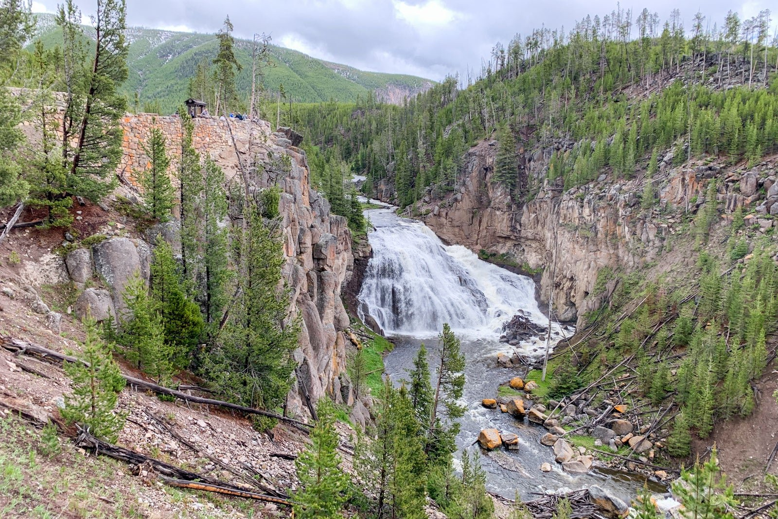 A beginner's guide to visiting Yellowstone National Park: Everything you should see and do - The Points Guy