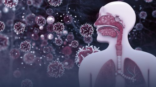 How Does Our Body Deal With the Stress of Viral Infections?