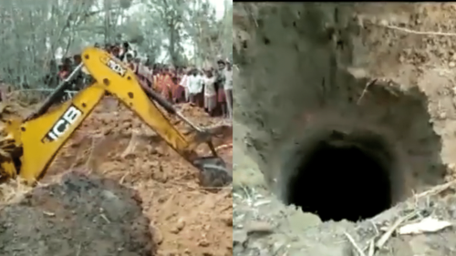 Odisha Authorities Rescue Elephant Calf From Well, Twitter Reacts