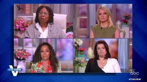 """The View's Ana Navarro on DeSantis prohibiting businesses from asking for vax proof: """"It's a very stupid thing to do."""""""