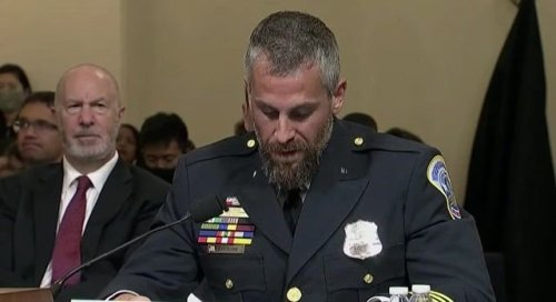"""Officer Fanone: """"Nothing ... has prepared me to address those elected members of our government who continue to deny..."""""""