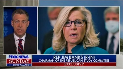 """Rep. Banks (R-IN) defends why party is trying to oust Liz Cheney from GOP leadership: """"She has failed in her mission..."""""""