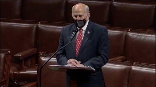 Today in Rep. Louie Gohmert Mad Libs: BLM, socialist country, Orwellian totalitarian, race, Antifa, chaos.
