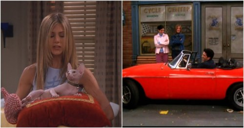 Friends: 10 Ridiculously Expensive Things The Characters Bought