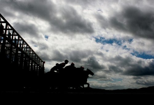 Is Zaaki a touch overrated? Underwood Stakes preview and tips