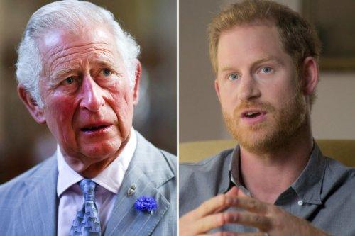 Harry 'bizarrely hellbent' on trashing dad who feels attacks 'unjust'