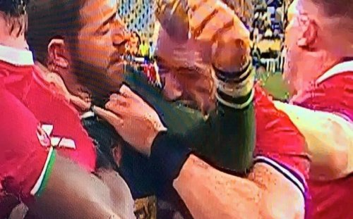 Stuart Hogg accused of 'biting' Springbok rival Willie le Roux in viral clips