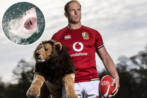 Lions stars will be allowed to swim with SHARKS during South Africa tour
