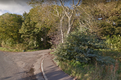Man's body discovered in Aberdeenshire woodland as cops cordon off scene
