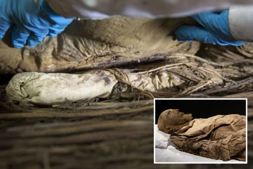 Mystery over 350-year-old bishop buried with foetus between legs finally solved