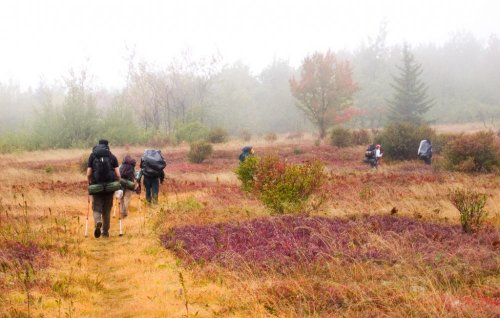 A Guide to Rucking, My Favorite Low-Cost Exercise Activity | The Simple Dollar