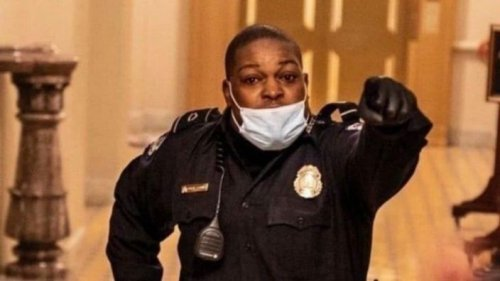 Black Capitol Hill Officer Dubbed 'Hero' After Protecting Lawmakers During Riot