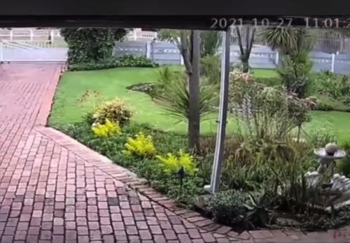 Watch: Boksburg properties ROCKED by 'earth tremor'