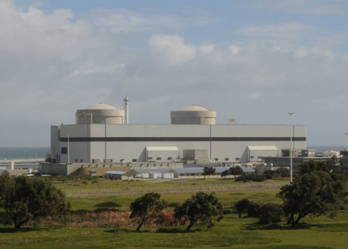'Horrifying': Eskom fears for Koeberg, as skilled workers ditch nuclear plant