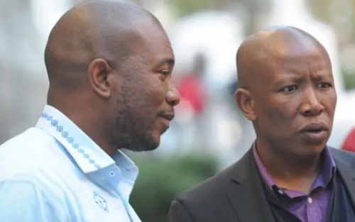 Maimane ridicules 'baby girl' Malema in comical online scuffle