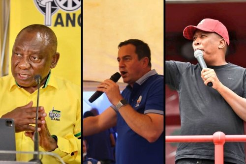 Ramaphosa vs Malema vs Steenhuisen: What qualifications do they have?