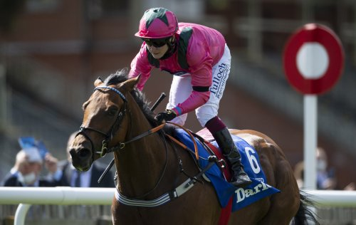 Thursday Racing Preview: Cheltenham Wide Open As Oxted Well-Fancied At Newmarket