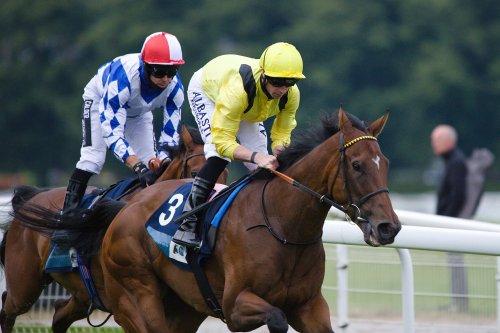 Friday Horse Racing Preview: Fooraat Danzan Of Interest At York Newmarket