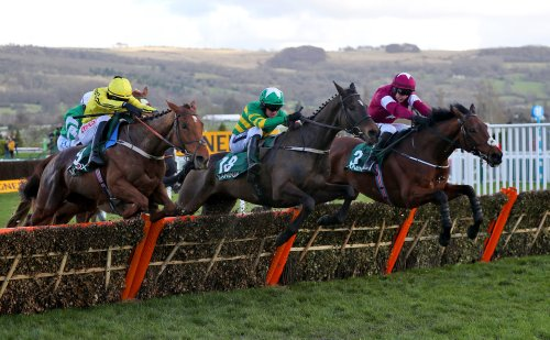Saturday Racing Preview: Cheltenham Open Its Doors For First Time This Season