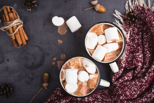 Where Did Hot Chocolate Come From?