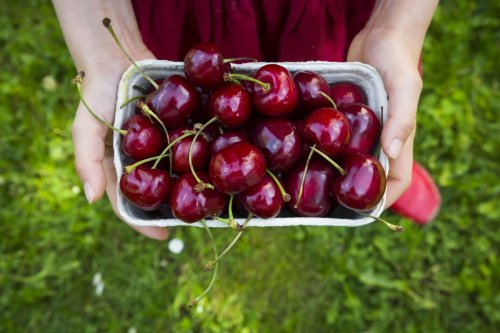 5 Cherry Pitting Hacks