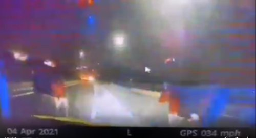 Dashcam captures moment South Yorkshire Police traffic cops almost hits loose cows in road