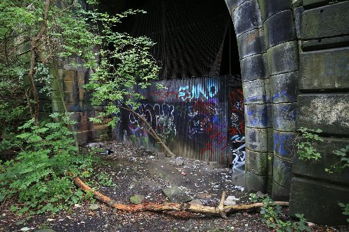 Brave souls who braved Sheffield's notorious 'Fiery Jack' tunnel 'deserve better' than needle-strewn dumping ground