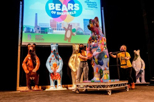 'Bears of Sheffield' auction hopes to raise needed funds for new cancer ward