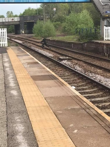Youths seen jumping over train tracks and taking selfie on platform edge at Sheffield station