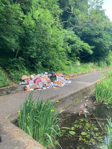 Anger after Sheffield park and lake are 'trashed after all-night partying'