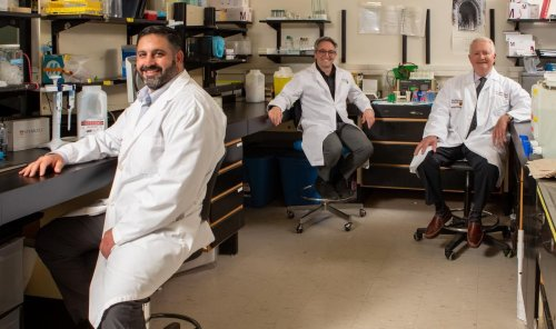 Hamilton lab finds treatment for potentially deadly blood-clotting condition