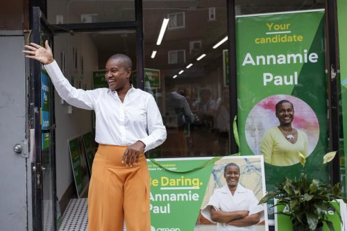 'She is killing the party': New Green executive candidates won't commit to supporting Annamie Paul