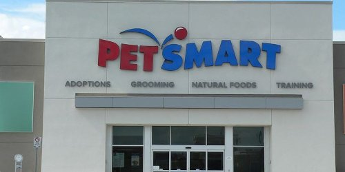 'Dispose of it immediately': Major recall of cat food sold at PetSmart, Pet Valu and other stores triggers Health Canada warning due to salmonella fears