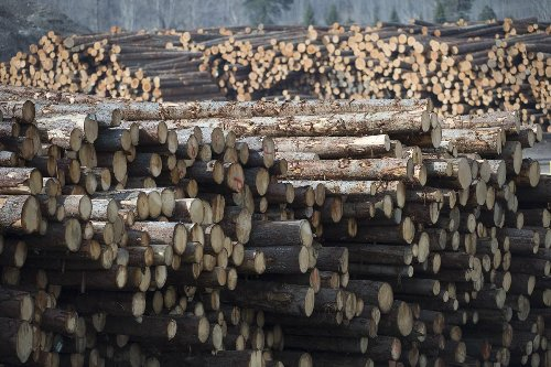 GreenFirst Forest Products announces acquisition of six lumber mills and a newsprint mill from Rayonier