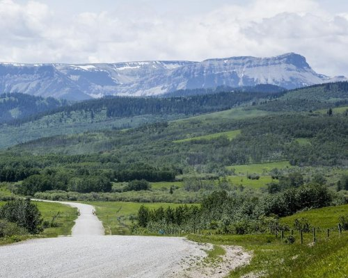 A for Quebec, F for Alberta: Study rates Canadian governments on conservation