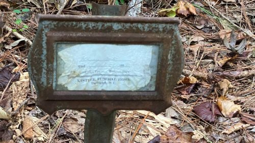 Black church lost track of old cemetery — then historians found it hidden in SC woods