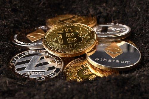 'Govt should regulate cryptocurrencies, not ban them'