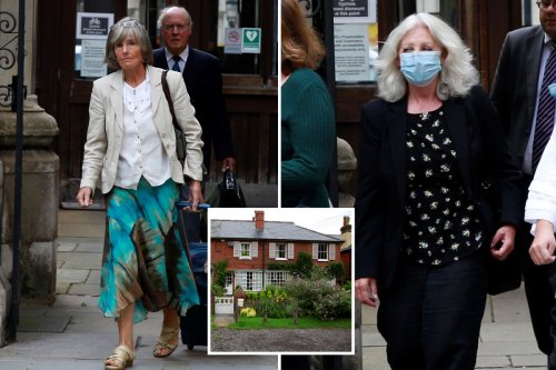 Woman 'imprisoned' by wasps swarming to neighbour's apple tree sues for £200k