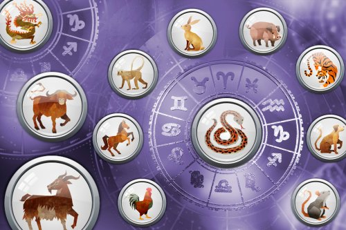 Daily Chinese Horoscope Tuesday February 23: What your zodiac sign has in store