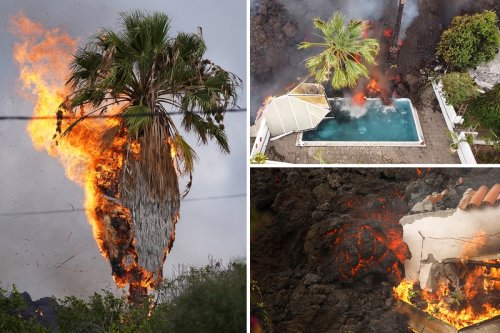 Dramatic clip shows La Palma lava swallowing pools & homes as thousands flee