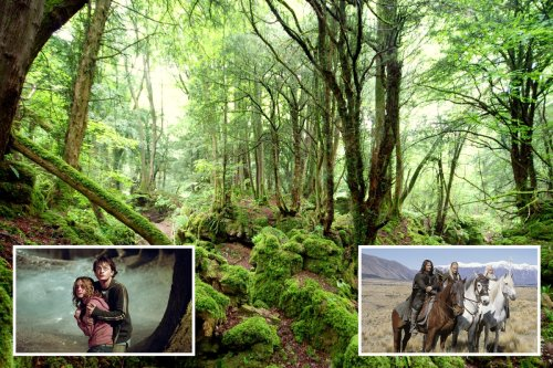The creepy UK woods to visit that inspired Lord of the Rings & Harry Potter
