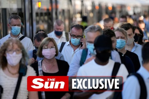 Covid passports and face mask wearing move step closer to stop cases rising