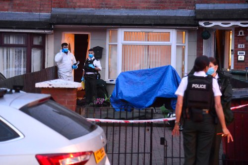 Two-month-old baby stabbed to death & toddler, 2, injured in horrific attack