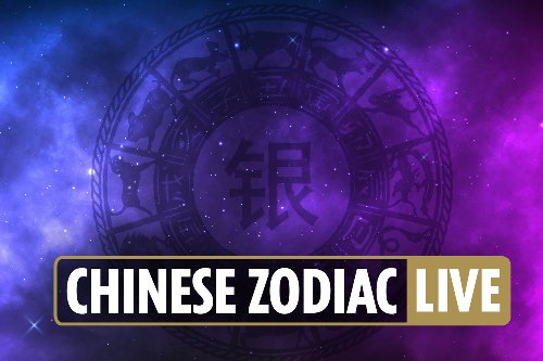 Chinese zodiac horoscope for Ox, Dragon, Snake, Tiger, Monkey and more