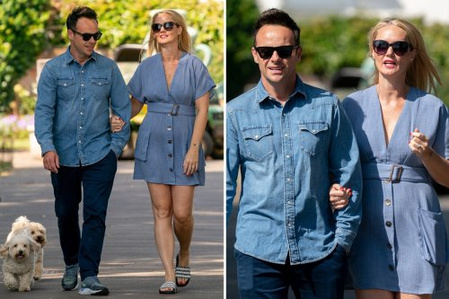 Ant McPartlin and fiancee Anne Marie walk their dogs on a romantic stroll in London ahead of wedding
