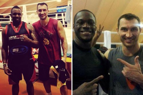 Deontay Wilder was knocked out cold 'twitching' on floor by Wladimir Klitschko during sparring, claims witness Whyte