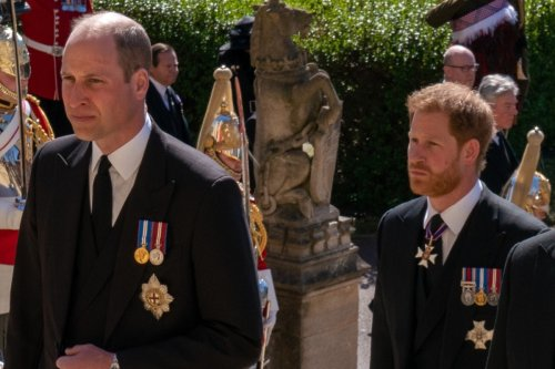 Prince Harry and Prince William 'not talking at the moment', royal expert claims