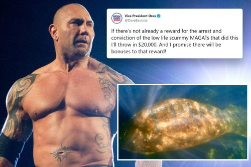 Batista offers £15k reward to find the people who scratched 'Trump' on a manatee