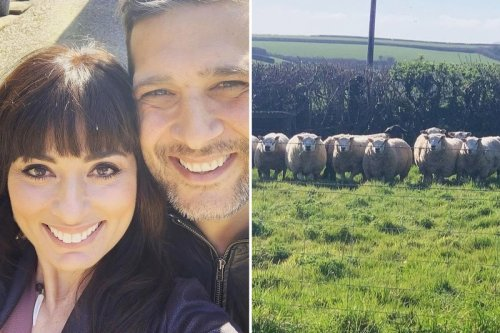 Strictly's Flavia and actor husband Jimi Mistry quit fame to run a farm in North Devon
