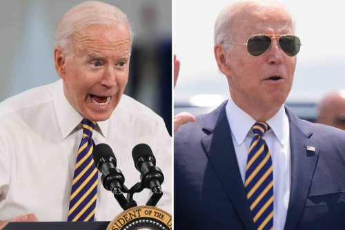 Biden FORGETS reason why he ran for president as he makes another blunder